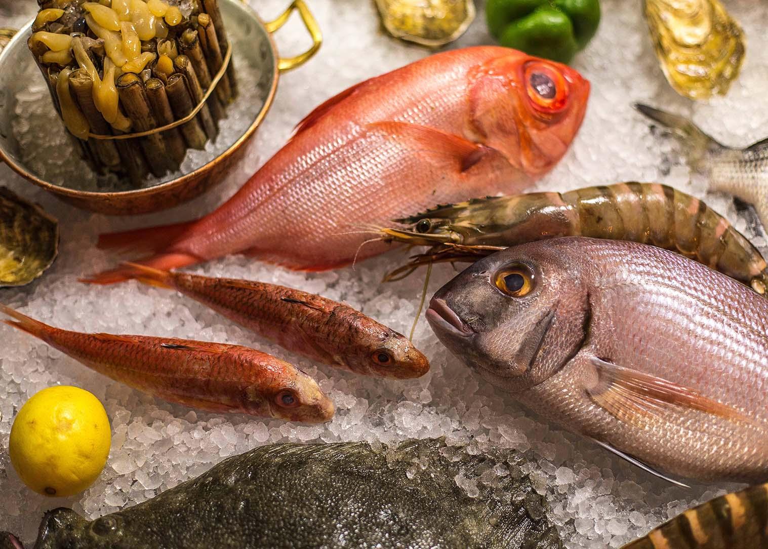 Pește oceanic
